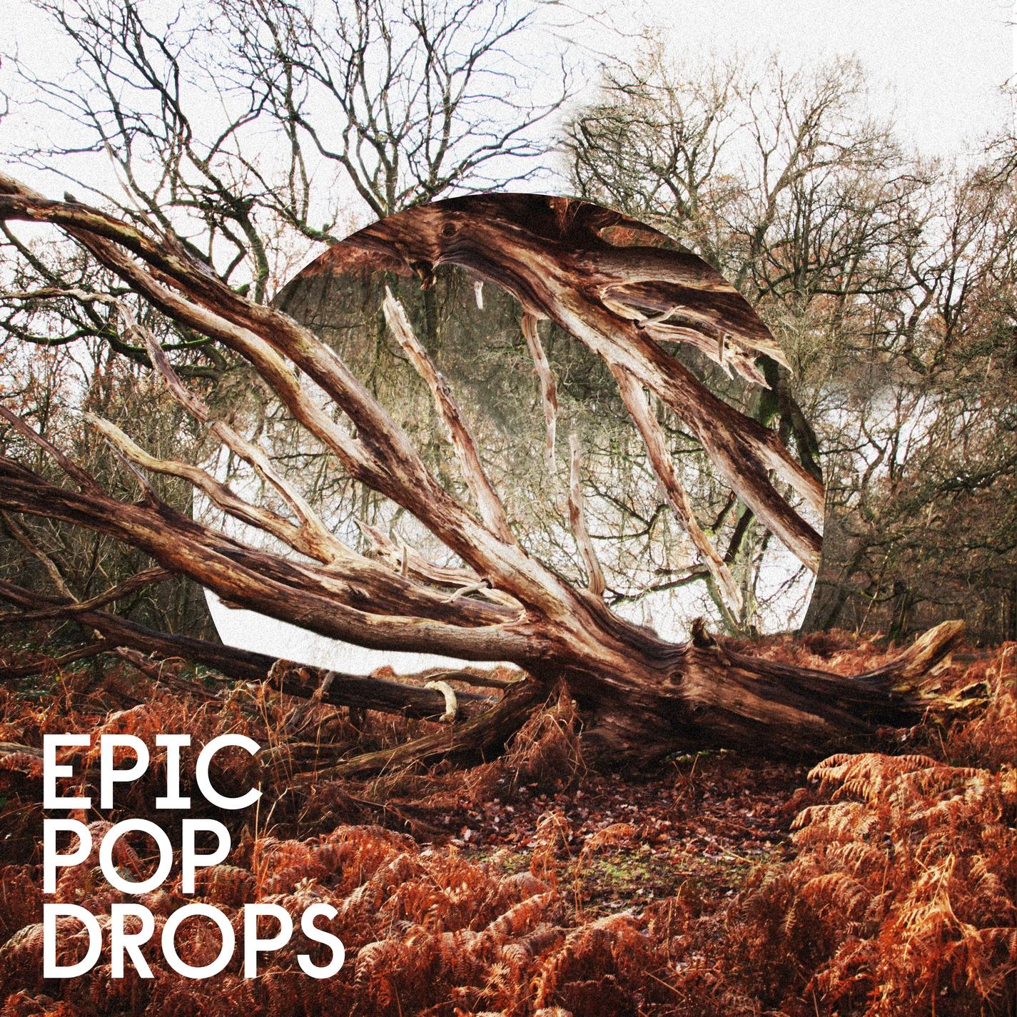 Epic Pop Drops
