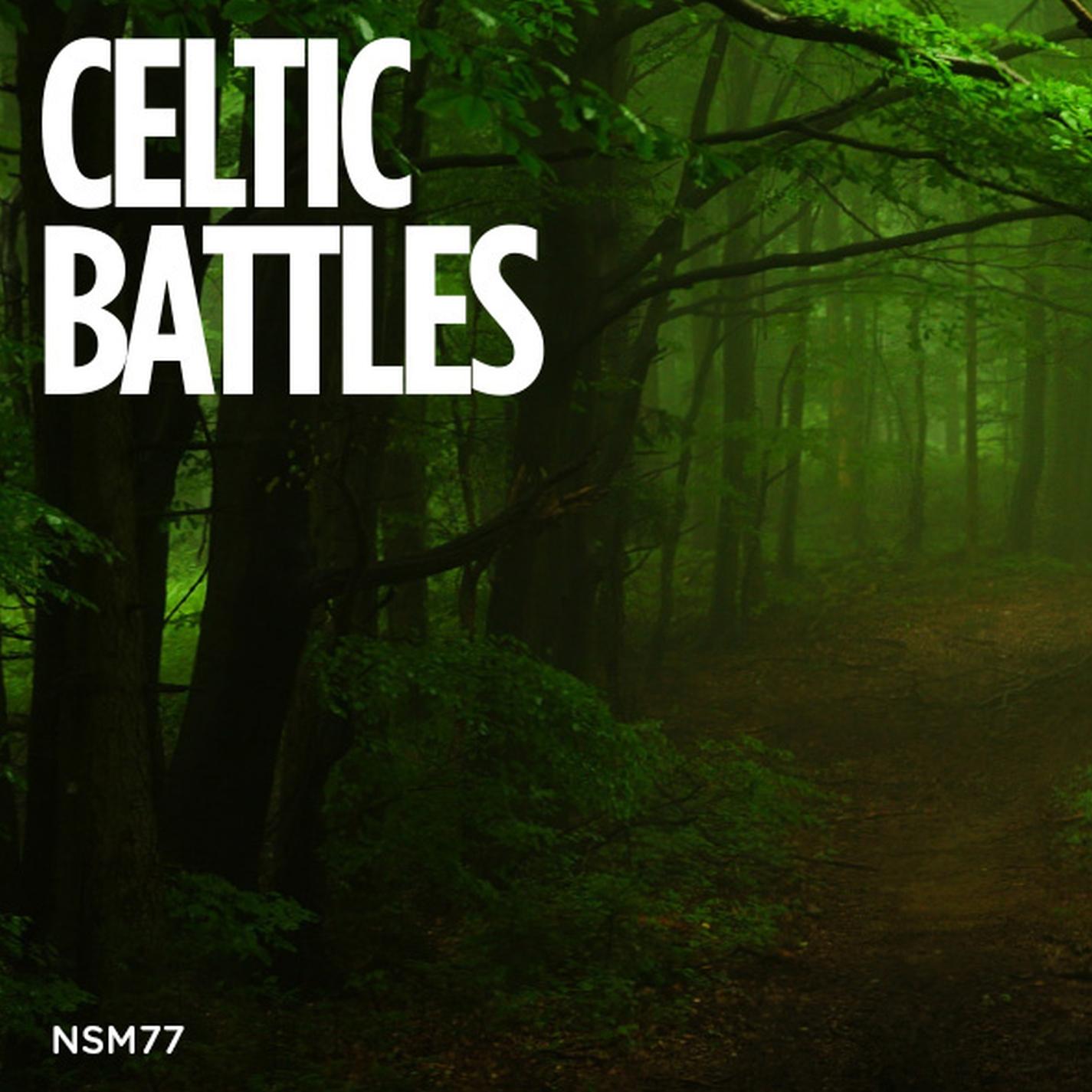 Celtic Battles